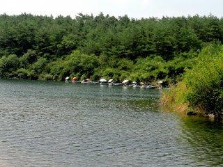 Várias pessoas pescam debaixo dos chapéus-de-sol, na margem do lago