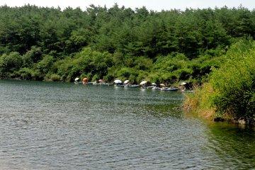 <p>Люди рыбачат под зонтами на краю озера</p>