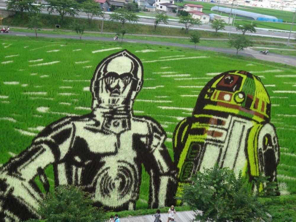 หุ่นยต์ C3PO และ R2D2 ก็ปรากฏตัวด้วย