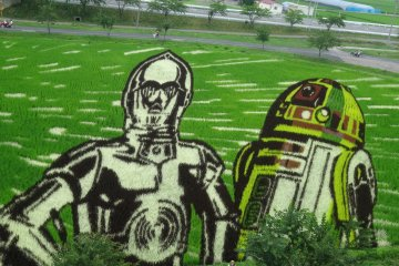 <p>Beloved droids C3PO and R2D2 make an appearance</p>