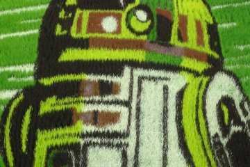 <p>A close-up of the many colors used to create R2D2</p>