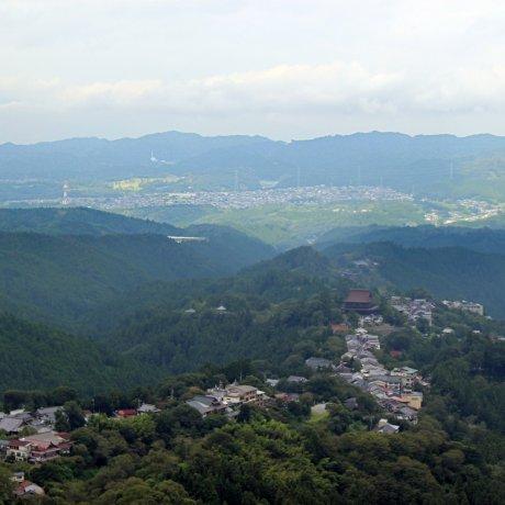 Down the Mountain in Yoshino