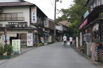 <p>Shimosenbon on the lower slopes of Yoshino Mountain &nbsp;</p>