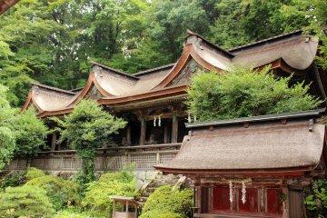 <p>Mikumari Shrine&#39;s main hall</p>