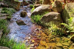 ทางน้ำภายในสวนกระทบแสงแดด