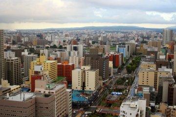 <p>The cityscape and Odori Park</p>