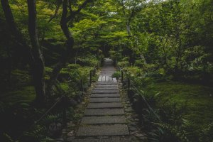 First pathway into the temple garden