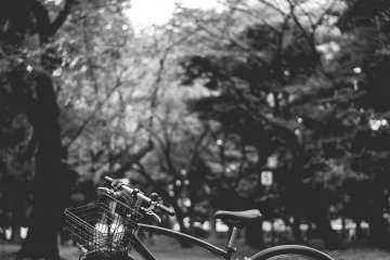 Rental Bike Tokyo