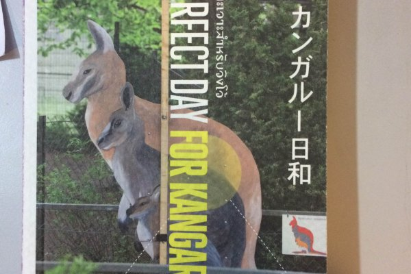 หนังสือ A Perfect Day for Kangaroos