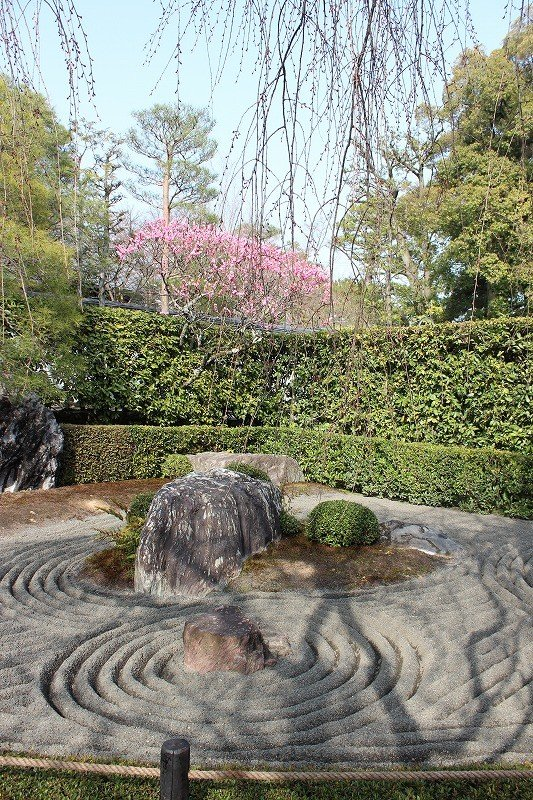 """The """"Yin rock garden"""" to the right of the entrance"""