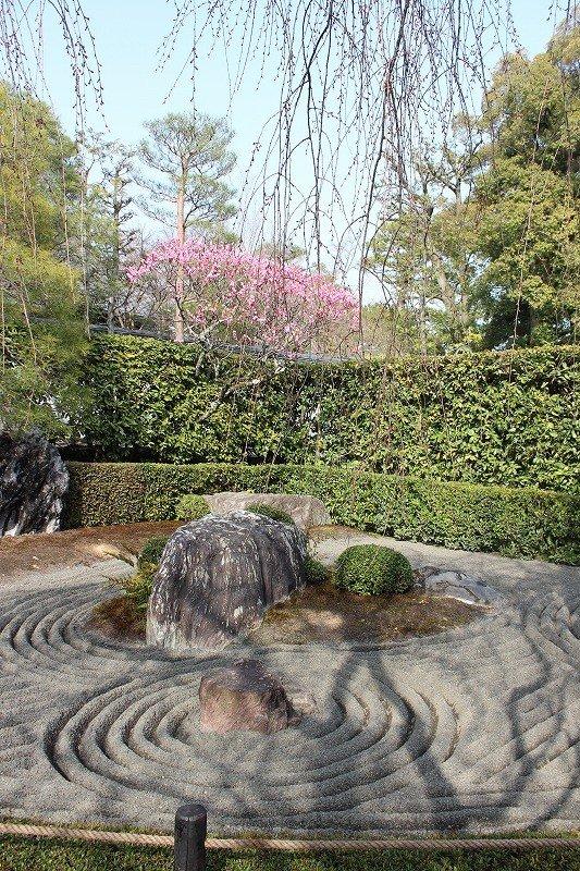 Taizo In Zen Garden Kyoto Kyoto Japan Travel