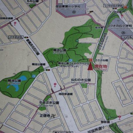 Парк Камоике в Йокогаме