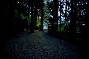 Des lanternes illuminent le chemin jusqu'au temple