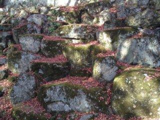 落ち葉は石垣にも降り積もる