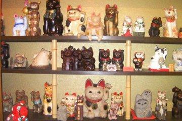 Kitties galore