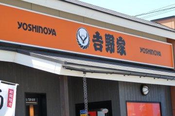 Eating Yoshinoya in Soja City