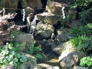 De petites chutes d'eau s'écoulent sur l'autre rive