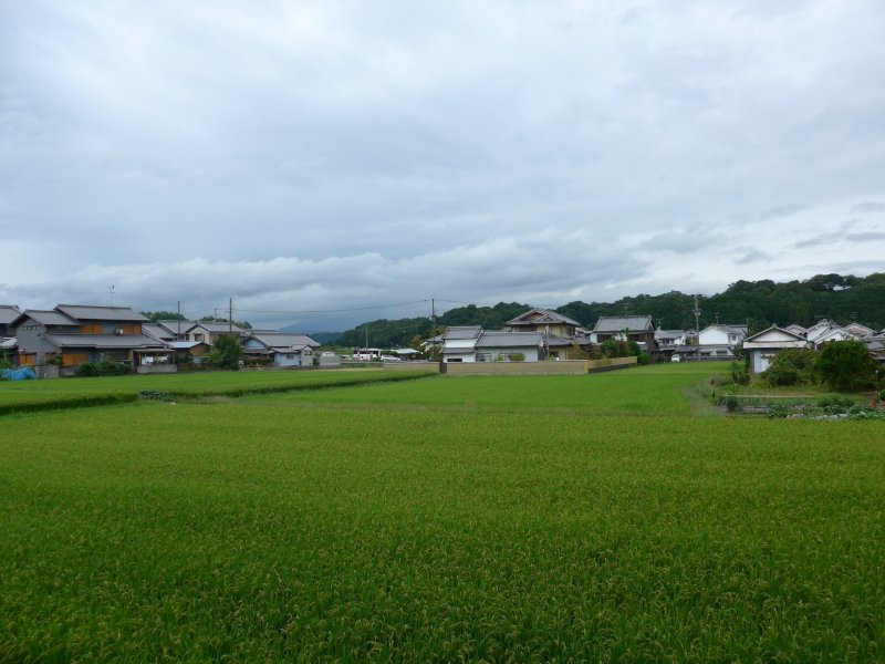 <p>On the train you can also get good views of the more quiet parts of Kansai.</p>