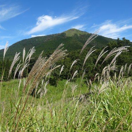 Awal Musim Gugur di Gunung Aso