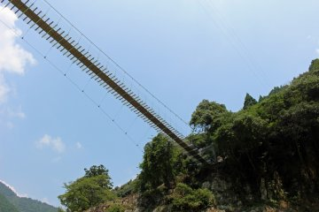 <p>Looking up at the Yamabiko Suspension Bridge</p>