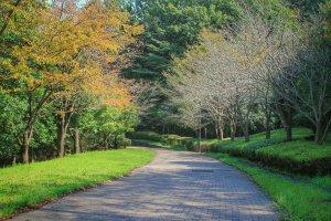 Taman Toritsu Oyamadairi Tokyo di awal musim gugur