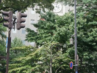 Tersembunyi di tengah pepohonan hijau, The Clock Tower tak luput dari mata wisatawan.
