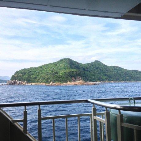 Shimo Amakusa Ferry