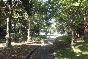 <p>Kuraki Park</p>
