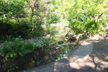 <p>Mitsuzawa Park</p>