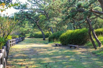 <p>You will find many benches to enjoy your lunch</p>
