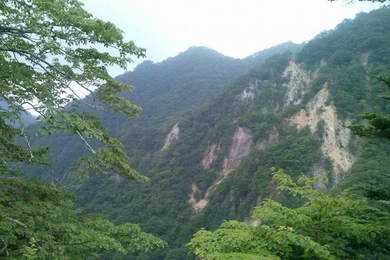 Nikkô, Terre des Ours et des Onsen