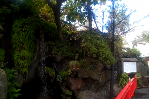La cascade du parc