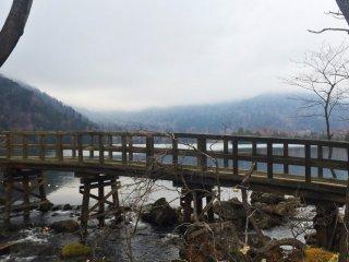 เดินข้ามสะพานไปยังเส้นทางเดินป่า