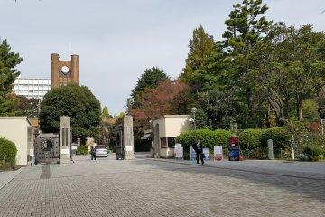 도쿄대학 코마바 캠퍼스와 코마바 공원