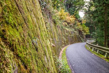 <p>Despite being officially closed for over half a century the roads are in amazing condition suggesting that they may still be used occasionally</p>