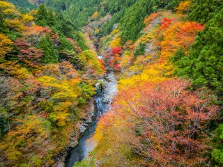 Looking out eastward towards the impressive and colorful Sogaku Ravine