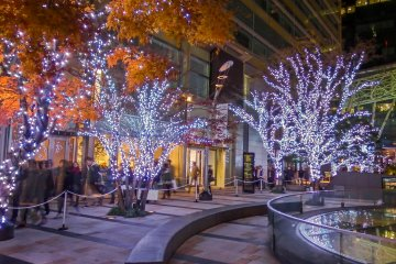 <p>Some of the bright and colorful &#39;Welcome Illuminations&#39; situated along Gaien-Higashi Street</p>