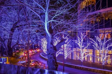 <p>The bright lights transform everything into an ambient vibe</p>