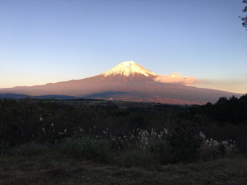 <p>Clear view of Mt Fuji at the Noh stage located in front of the main building</p>