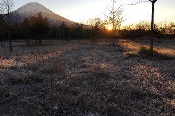 <p>Morning sunrise near Seiyoen around 5.30am</p>