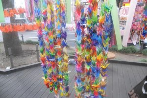 Paper cranes which represent health, family and longevity