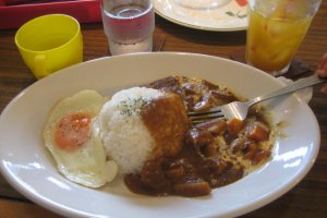 My order: Japanese Root vegetable (lotus root!), chicken curry-rice