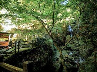 Le chemin serpente en remontant le cours d'eau, que l'on franchit de temps à autres par une série de petits ponts