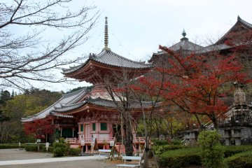 <p>The Taho-to Treasure Pagoda obscured by a maple tree.</p>