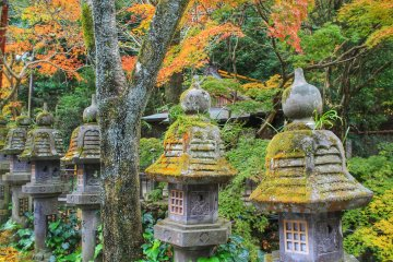 The old stone lanterns are covered with moss and grass