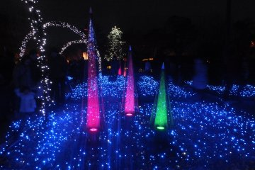 สวนที่ประดับด้วยแสงไฟสีน้ำเงิน