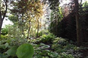 The aptly named Color Leaf Garden