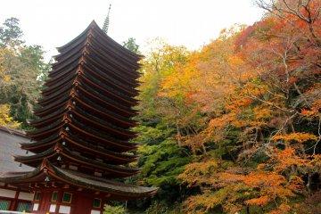 <p>The 13-story pagoda and the autumn foliage</p>