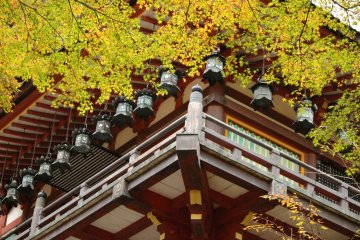<p>The lanterns of the prayer hall and the leaves fit together like a jigsaw puzzle</p>