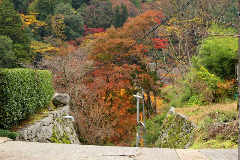 <p>The driveway at the top of Tonomine Pass leading to Tanzan Shrine</p>